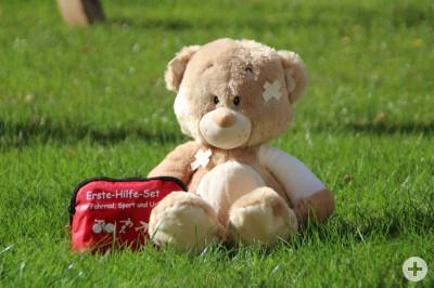 JRK-Teddy